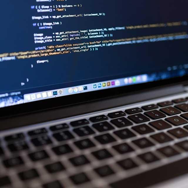 Softwareentwicklungsdienste Indien