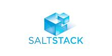 Saltstack Tech Logo
