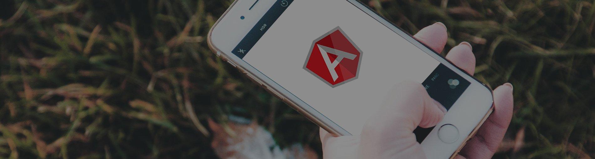 Angular.js Development Services India
