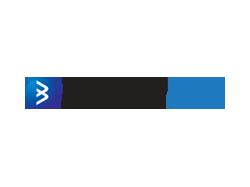 BorderlessMInd Technologies Logo