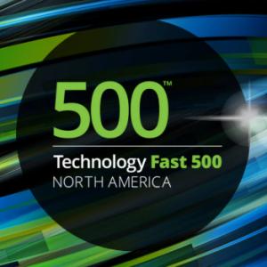2019 Technology Fast 500™ awards